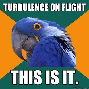 paranoid_parrot__airplanes_meme__by_lpawesome-d4qzdfb
