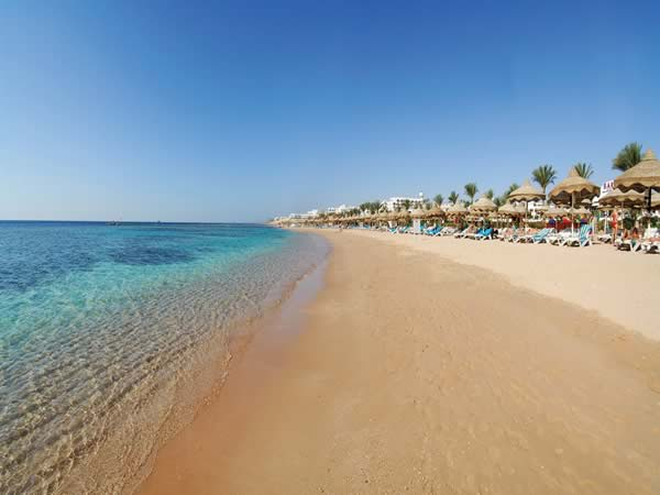 sharks bay sharm egypt sinai
