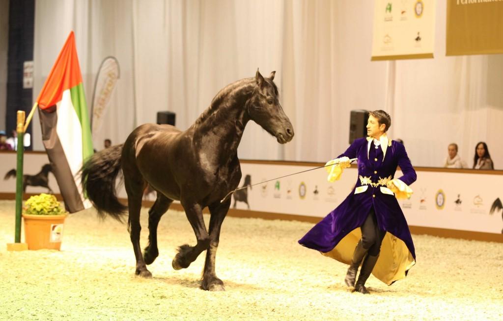 DIHF - Spanish horse perfomance 1