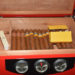 "Cigar Nights: ""The New In"""