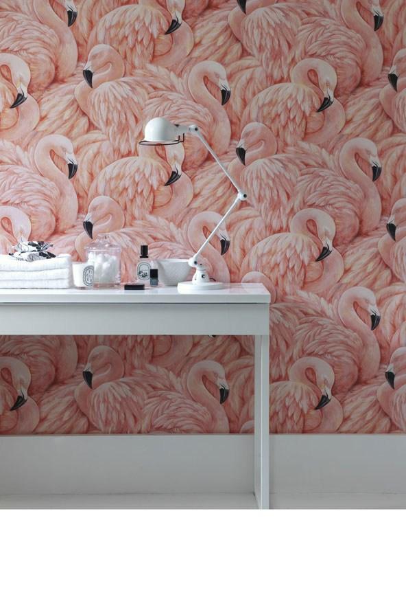 Flamingos_glamour_22Apr14