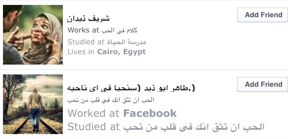 how to survive egypt social media