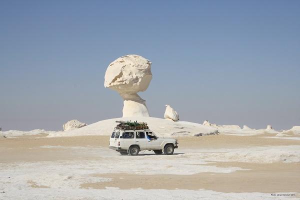 White_desert