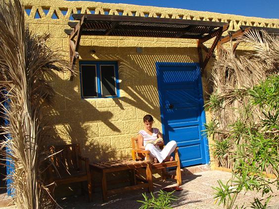 Ali Baba 4 Budget garden rooms