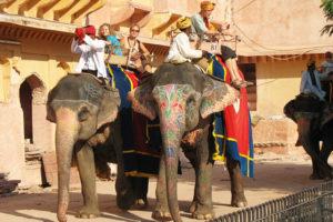 Elephant ride in India