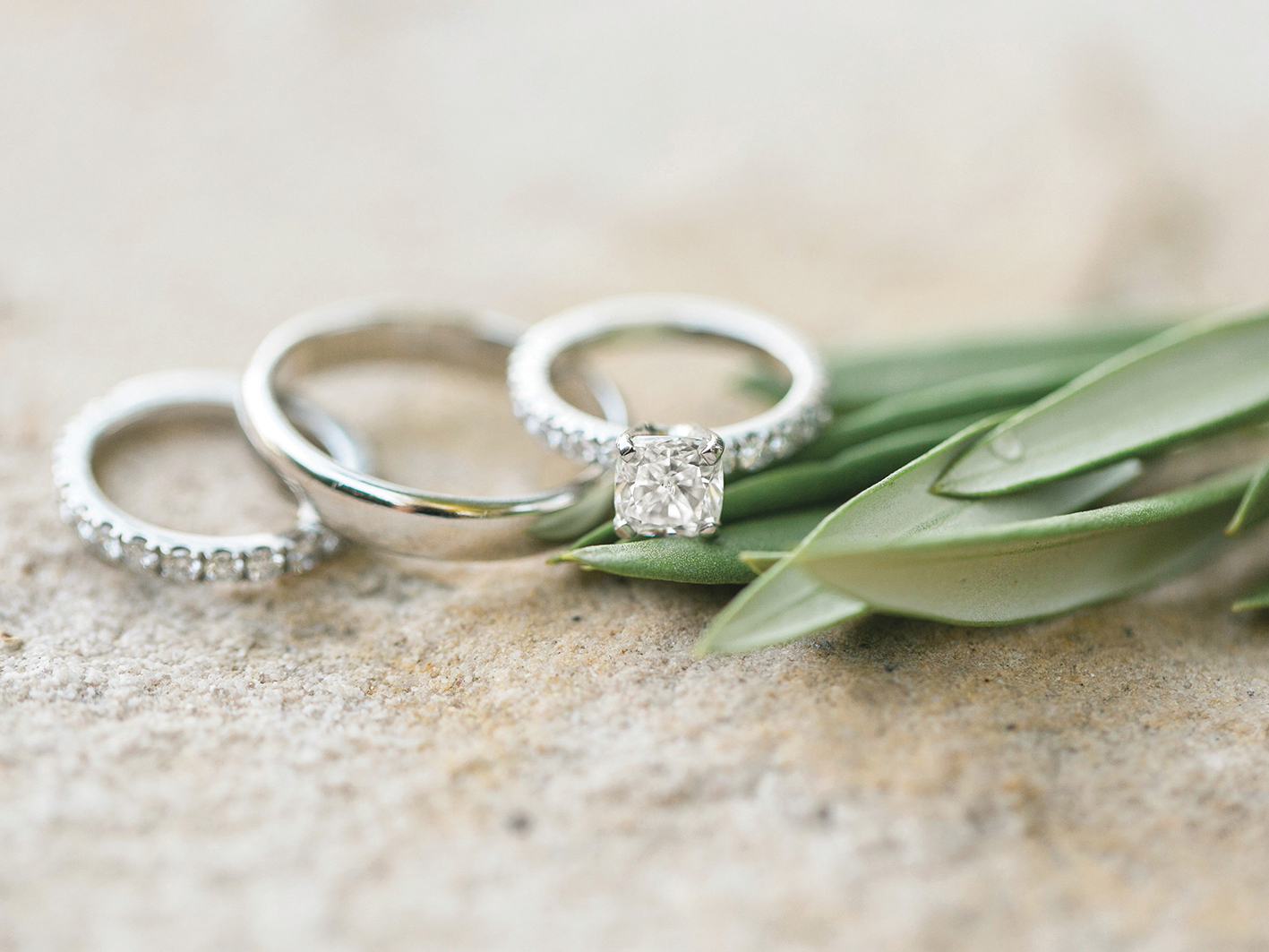 Average Cost Of A Small Wedding.Budgeting And Financing Your Own Wedding Identity Magazine