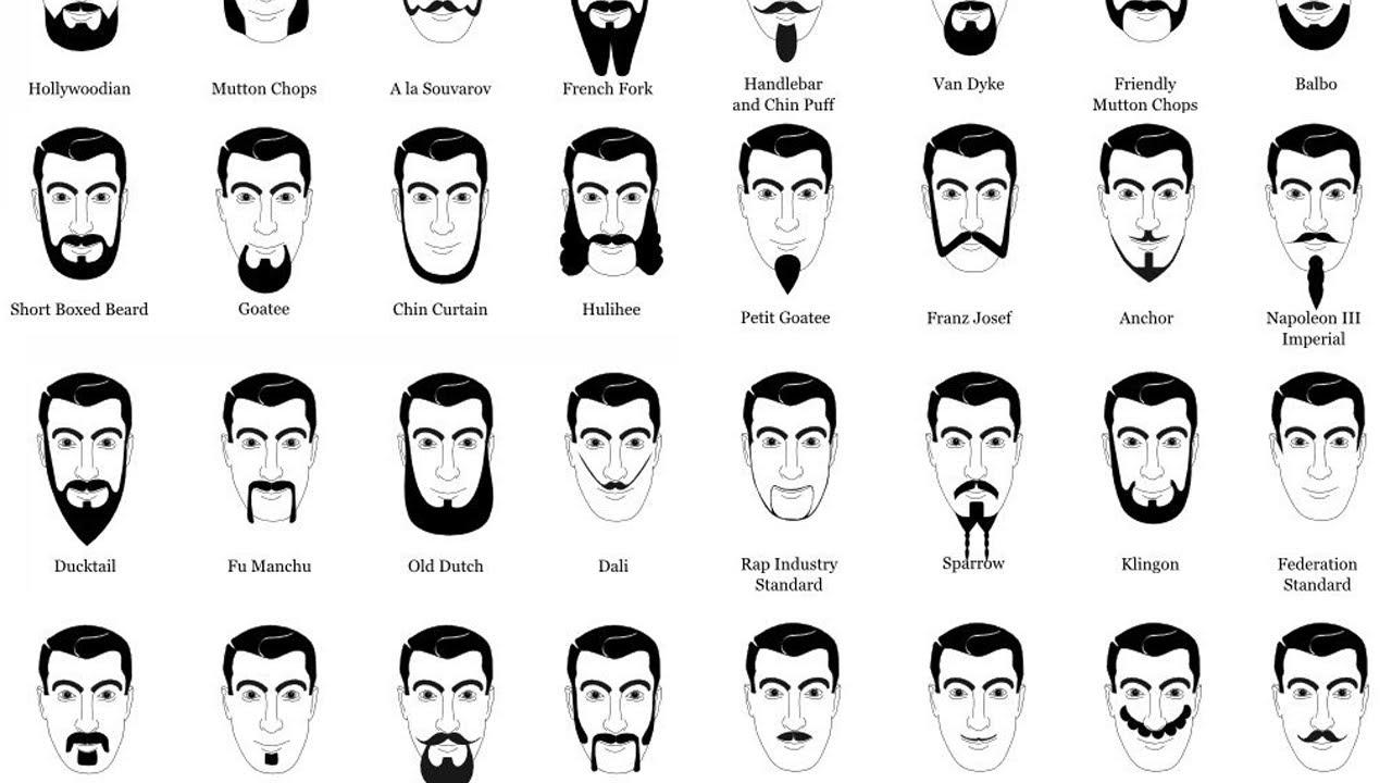 facial hair chart