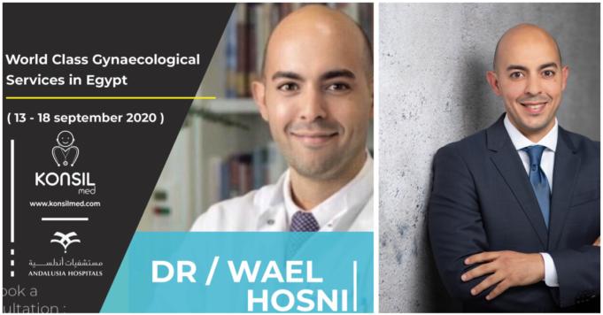 Wael Hosni